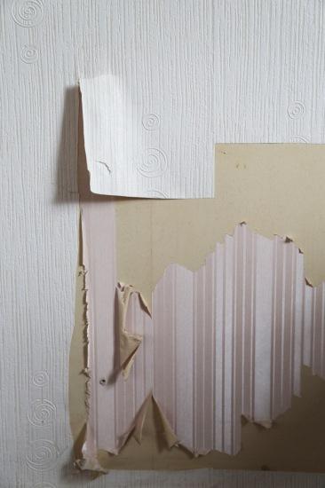 150510-WallPaperRemoval-Detail3