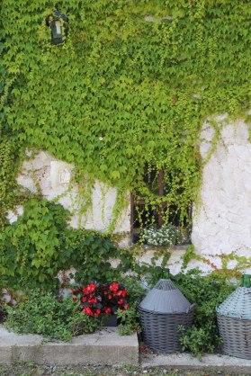 150705-Garden6