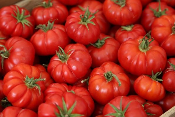 151007-Tomatoes