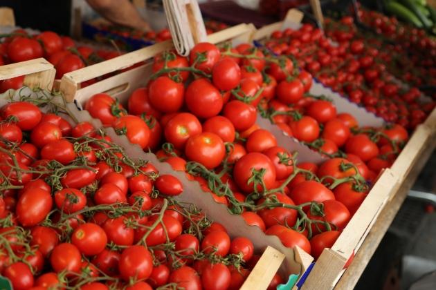 151007-Tomatoes3