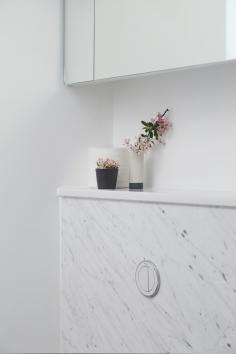 160509-BathroomFlush&Shelf