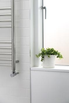 160509-BathroomPlant