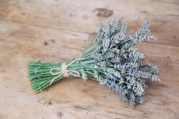 170826-Lavender-Bunch
