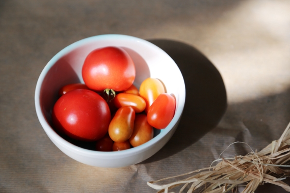 170906-TomatoHarvest
